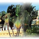 regions-du-cambodge