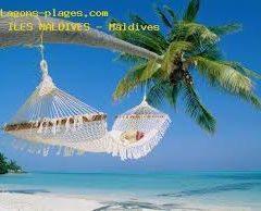 Partir pour les îles Maldives