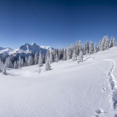 Mieux connaître les bienfaits du ski