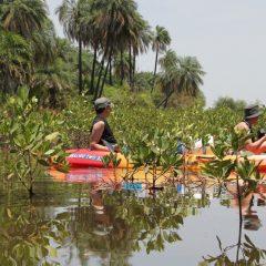 Voyagez solidaire dans le Sine Saloum, et soutenez un projet pour développer l'éducation et l'éco-construction au Sénégal