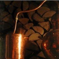 Distiller des immortelles d'Italie à Tinos dans les Cyclades
