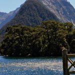 Milford-Sound-Nouvelle-Zelande