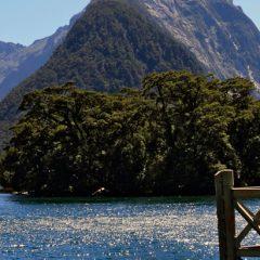 Les activités incontournables en Nouvelle-Zélande