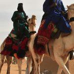 mali-chameaux