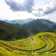 Vacances Tour, le spécialiste des voyages sur mesure au Vietnam et Indochine