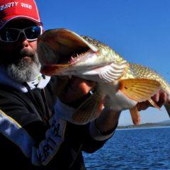 Vivre un séjour guidé pêche des grands brochets et gros black bass en Espagne, un rêve pour beaucoup, une réalité pour certain.