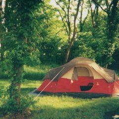 Quelques conseils utiles pour faire du camping en automne !
