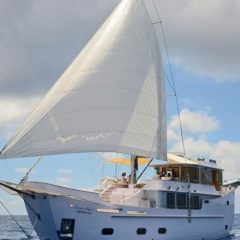 Yacht : Les meilleures destinations dans toute la Méditerranée.