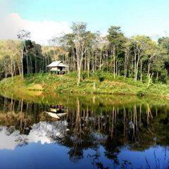 Dans les montagnes  Nord-Est Vietnam.