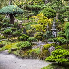 Le Japon : une destination intéressante à découvrir