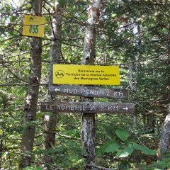 Réserve naturelle des Montagnes-Vertes au Québec