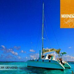 Croisière catamaran aux Grenadines