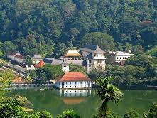Sri Lanka, un voyage vraiment pas comme les autres…