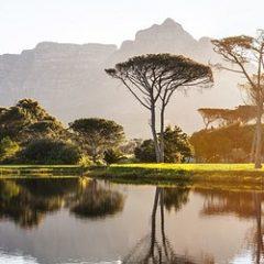 5 bonnes raisons de voyager en Afrique du Sud