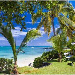 7 destinations pour des vacances de Noël au soleil