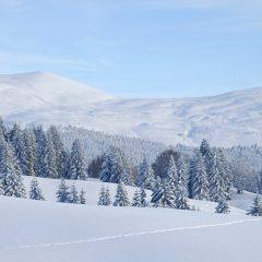 Découvrir le Haut-Jura pendant les vacances d'hiver : les activités à prévoir