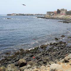 Dakar une ville à découvrir pour une échappée au cœur de l'Afrique