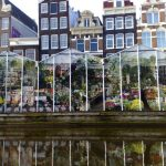 Amsterdam-marche-aux-fleurs