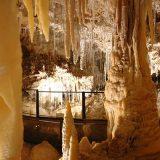 La grotte de Clamouse: pour découvrir, comprendre et s'émerveiller en famille ou entre amis.