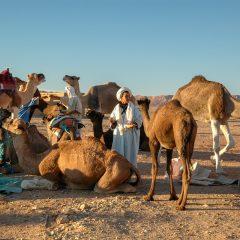 Le tourisme villageois, un concept inédit pour passer ses vacances au Maroc