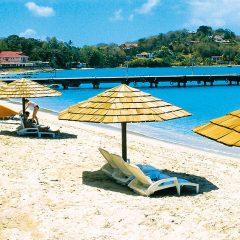 Passer des vacances d'exception en Martinique