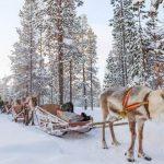séjour unique en Finlande