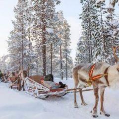 Préparer un séjour unique en Finlande