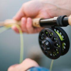 Quel abri pour la pêche à la carpe ?