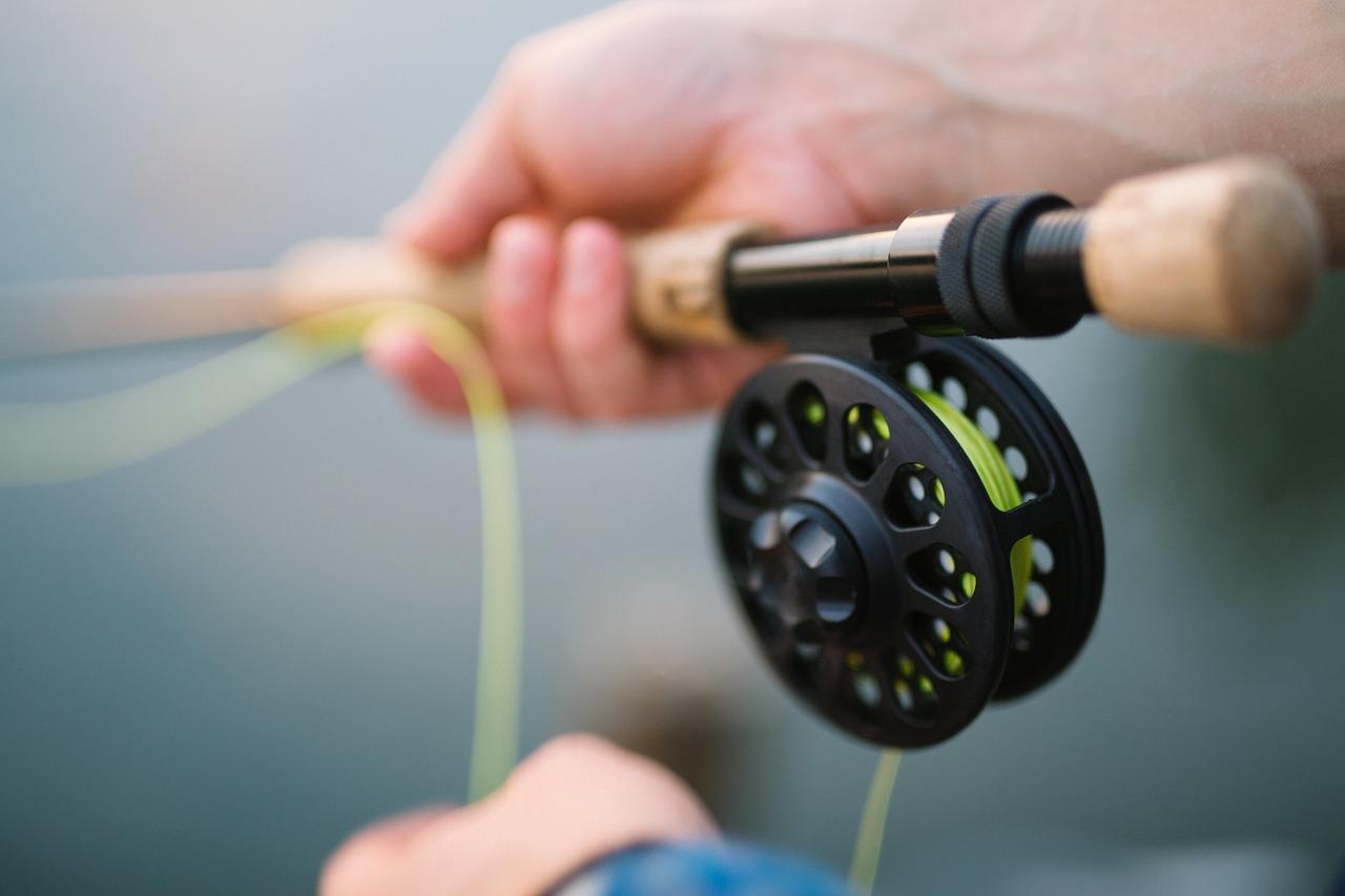 Quel abri pour la pêche à la carpe