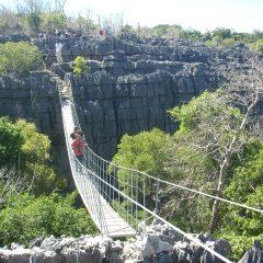 Que choisir pour mieux explorer la nature à Madagascar : la promenade, la randonnée ou le trekking ?