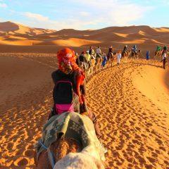 5 idées de voyage au Maroc avec enfants