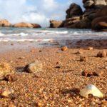 plage-ploumanach-1-770x400