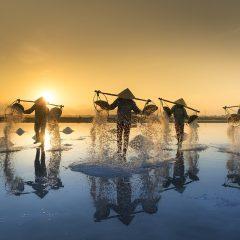 Les bonnes raisons de visiter le Vietnam lors de son prochain voyage
