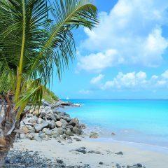 La Martinique, une destination exceptionnelle pour les vacances