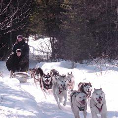 Conseils pour passer des vacances d'hiver mémorables au Canada