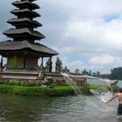 Safari Bali, un séjour adapté aux plongeurs et non plongeurs.