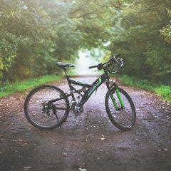 Faire à vélo les belles voies vertes de la Somme