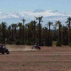De la Palmeraie à Lalla takerkoust, découvrez les régions de Marrakech autrement…