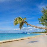 Les incontournables de la Martinique