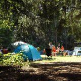 Visiter Brissac Quincé et les châteaux de la Loire : 5 raisons de se loger dans un camping