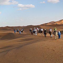 Les Meilleures Visites, Expériences et Excursions à Marrakech